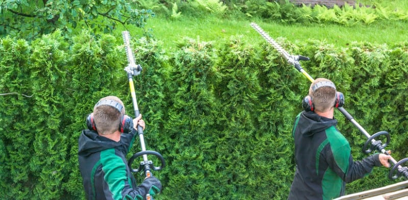 After comparing 19 models, we have narrowed down the best long reach hedge trimmers to just 5 models worth considering. Read our reviews now.